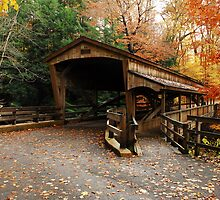 Lantermans Mill Bridge In Fall by thatstickerguy