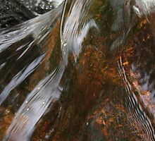 Moors water/ Paula Cattermole by paula cattermole