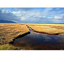 Golden Desert Oasis Photographic Print