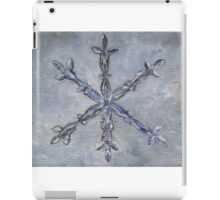 S is for Snowflake iPad Case/Skin