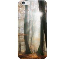 Sun rays in a mystic misty forest iPhone Case/Skin