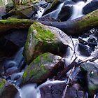 Near Murrundindi Falls by aerdeyn