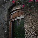 Termites eating 18th Century door destruction series; F**k off the Isle. by jemmanyagah