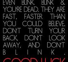 Don't Blink by MeitisMitsune