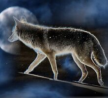 MoonDog by Jan Landers