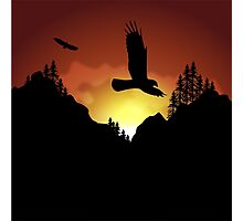 Eagles Flying High Photographic Print