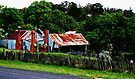 Old Cottages, Hill End by Evita