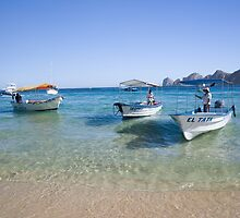 Cabo Water Taxis by Susan E. Adams