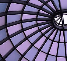 Skylight to the Future by Lynne Prestebak