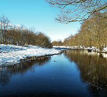 Gentle edged lies the banks of the River Swale by clickinhistory