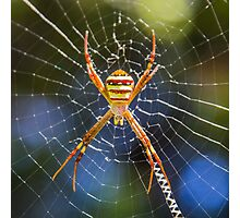 Golden orb Photographic Print