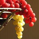Faux Grapes by CynLynn