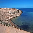 Eagle Bluff, Shark Bay, Western Australia (Y) by Adrian Paul