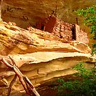 Anasazi Cliff Dwelling - Utah by Rick Schafer