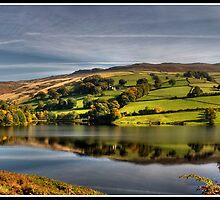 Ladybower reflection by Shaun Whiteman