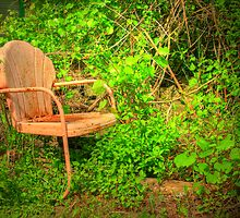 Vintage Garden Chair by Tony  Bazidlo