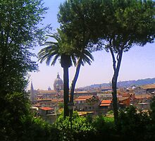 Italy       Overlooking Rome by Landscapes Mainly .