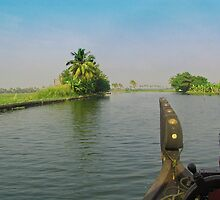 Captain of the houseboat surveying the saltwater canal in Kerala, India by ashishagarwal74