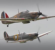 Hurricane And Spitfire Battle Of Britain by Colin  Williams Photography