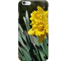 Flowers in Bloom iPhone Case/Skin