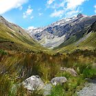 Arthur's Pass by johngs