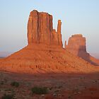 At Sunset  Monument Valley by Barbara Burkhardt