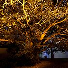 The Golden Tree by sharath