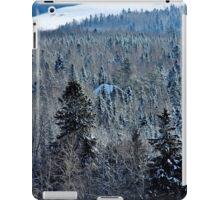 Hidden in the Winter Woods iPad Case/Skin