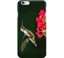 Hovering Hummingbird iPhone Case/Skin