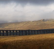 Ribblehead viaduct  by Tim Fitzgerald