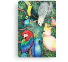 Parrots in the trees Canvas Print
