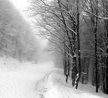Frozen III by andzer