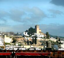 Skyline Granada by littlefrog7