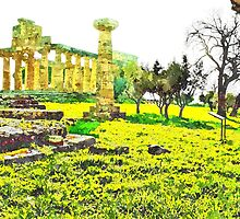 Paestum: temple column and trees by Giuseppe Cocco