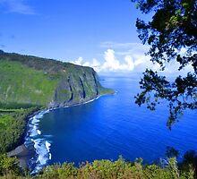 Blue Hawaii by Leona Bessey