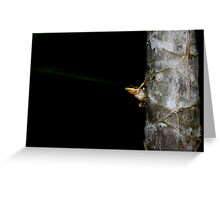 Lazer beam me up froggy Greeting Card