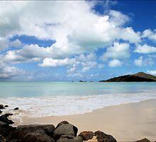 Carribean Calm by Donnie Shackleford