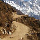 Mt. Everest ~ A Glimpse of Grandeur  by Patty Boyte
