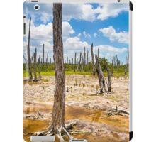 Intriguing Forest On The Yucatán Coast Near Celestún Mexico iPad Case/Skin