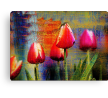 Weathered Tulips Canvas Print