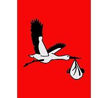 Stork baby Photographic Print