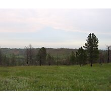 Scenery from the Black Hills Photographic Print