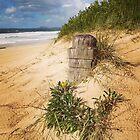 Southbeach Dunes by Geraldine Lefoe