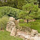 Zen Garden by boehmgraphics