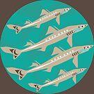 Spiny Dogfish by Mark Gauti
