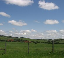 Country Landscape by silverdragon