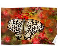 Kite Butterfly Poster