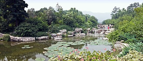 Beijing Botanical Gardens by boehmgraphics