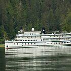 Cruising Alaska by Luann wilslef