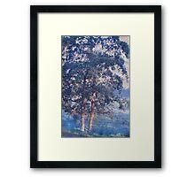 Blue Trees. Monet Style Framed Print